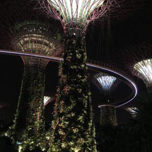 Singapore 4